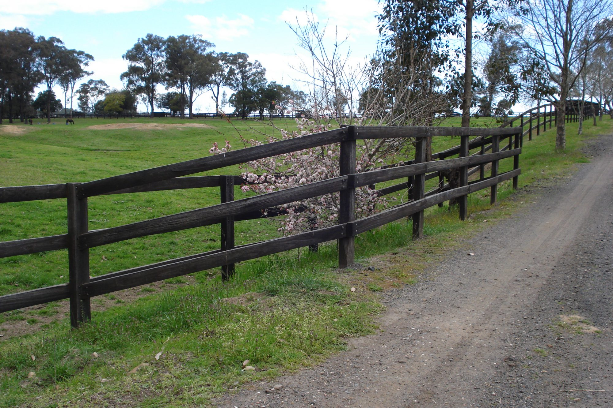 Fencing Suppliers Sydney